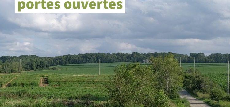 Photo of fields in summer.
